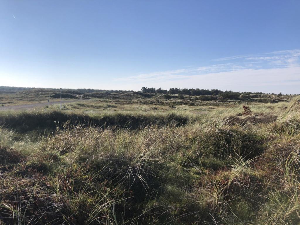 Vesterhavspark